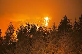 Wild Fire Columbia Gorge by The Us West Had A Snowy Winter So Why The Fiery Summer