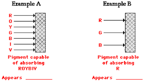 Visible Light Examples Light Absorption Reflection And Transmission