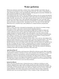 pollution essay 2 pages professional profile template film