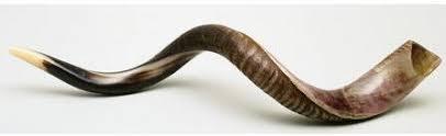 rams horn trumpet tikvah yisrael the shofar