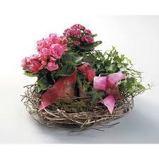 marion flower shop nest basket fuzzy s flowers marion oh florist best local