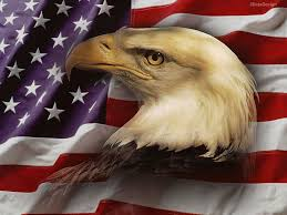 Bald Eagle And American Flag American Flag Clipart Eagle Statue Liberty