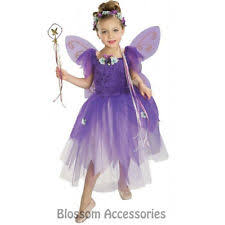 ck163 plum pixie purple fairy wings book week fancy dress up