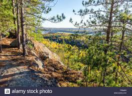 fall colorful trees algonquin park ontario canada stock