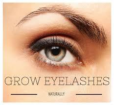 Does Vaseline Help Eyelashes Grow How To Grow Eyelashes Naturally Divine Lifestyle
