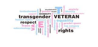 home transgender american veterans association