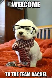 Meme Generator Dog - welcome to the team rachel hipster dog meme generator