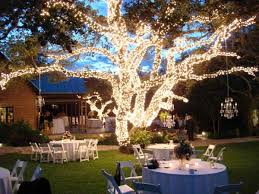 backyard wedding venues never underestimate the of white lights