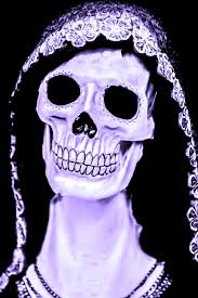 halloween skull with candle background halloween skull free stock photo public domain pictures