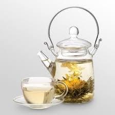 Jasmine Tea Flowers - 99 best flowering tea images on pinterest tea time flower tea