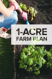 one acre homestead here u0027s what to plant raise and build