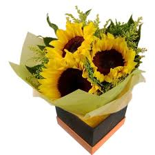 sunflower delivery sunflowers delivery poland fa1055 bouquet sunflowers