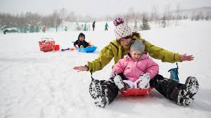 best family activities in niseko village kasara ytl hotels