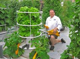 self sustaining garden independent at home six systems for self sufficient living