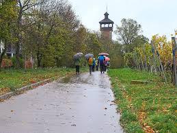 Wetter Bad Wimpfen Horb A N Wanderer Trotzen Dem Stürmischen Wetter Horb Am