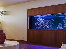 infinity aquarium design aquarium aquascape tropical ocean