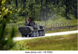 2nd Light Marines With Company D 2nd Light Armored Reconnaissance Battalion