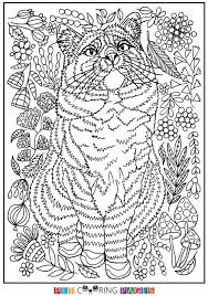 free printable domestic cat coloring