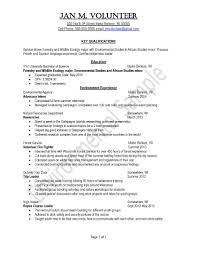 Work Experience In Resume Sample by Peace Corps Uva Career Center