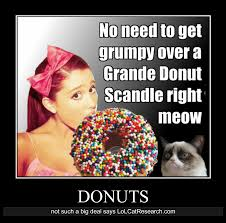 Research Meme - demotivational poster archives lol cat research