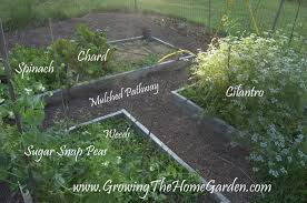 things to do in the vegetable garden end of may growing the