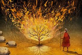 5 6 7 u2026eat u201d old testament 1 567 ministries