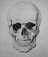gallery awesome drawings of skulls drawing gallery