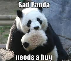 Give Me A Hug Meme - panda hug meme