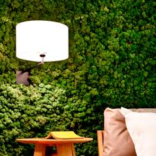 indoor vertical garden moss modular panel preserved plant