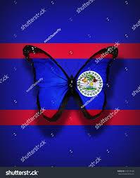 Belize Flag Belize Flag Butterfly Isolated On Flag Stock Illustration