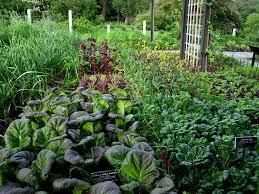 herb garden design u2013 home decoration