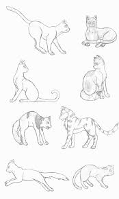 tabby cat coloring pages online warrior cats coloring pages enjoy coloring cats