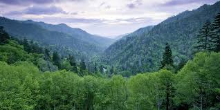 North Carolina mountains images Things to do in western north carolina smoky mountains biltmore jpg