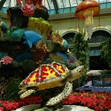 Bellagio Botanical Garden Bead And Needle A Sea Of Summer 2015 At The Bellagio