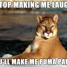 Puma Pants Meme - stop making me laugh you ll make me puma pants meme
