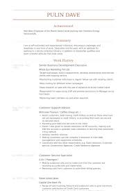 business development executive resume senior business development executive resume sles visualcv