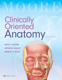 Human Anatomy And Physiology 9th Edition Marieb And Hoehn University Bookshop Ltd New Zealand