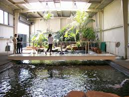 home interior garden indoor pond home intercine