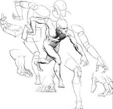 Anatomy Of Human Body Sketches 137 Best Anatomy Images On Pinterest Character Concept Concept