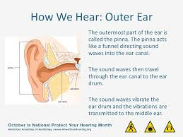 Over 36 million americans suffer from hearing loss that is over 4