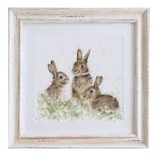 rabbit prints popular rabbit pictures to print born free framed bunny by