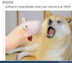 Doge Meme Tumblr - funny tumblr post random shit pinterest headphones memes