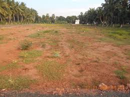 Land Plots For Sale by Residential Plots For Sale In Rajahmundry Land For Sale In
