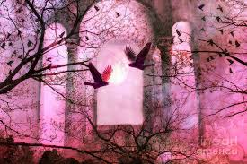 other nature moons birds flying beautiful four trees ravens
