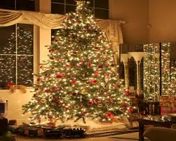 Christmas Trees With Lights How Fast Does A Christmas Tree Burn My Merry Christmas