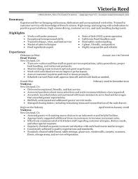 Good Resume Experience Examples by Server Resume Samples Berathen Com