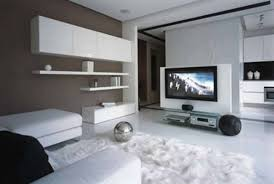 fluffy fur carpet in apartment living room with white ceramics