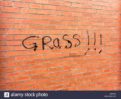 House Meaning by Graffiti On A House Reading Grass Meaning That The Inhabitant