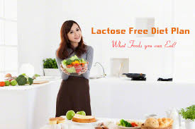 lactose free diet plan what foods you can eat stylish walks