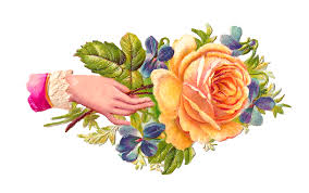 victorian rose pictures free download clip art free clip art